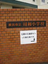 kawawa-2.jpg