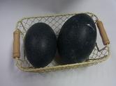 エミュー卵①.JPG