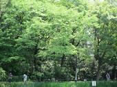 IMG_2159.JPGのサムネール画像のサムネール画像