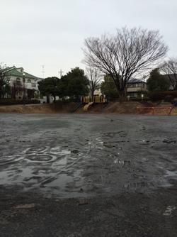 20150307ききょう公園.JPG