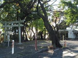杉山神社と公民館.JPG